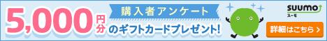 アンケートに答えて3000円GET