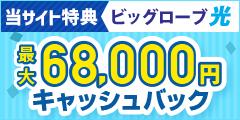 ビッグローブ光.net【株式会社NEXT】