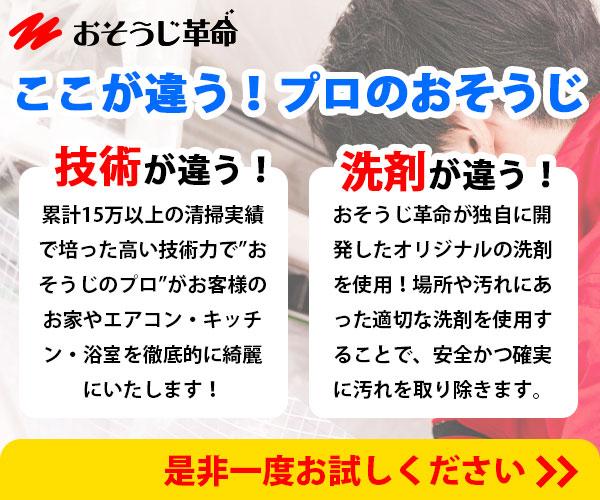 汚れと戦うプロ集団【おそうじ革命】