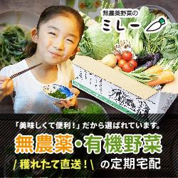 朝穫り無農薬野菜を産地から当日発送【無農薬野菜ミレー】新規定期購入