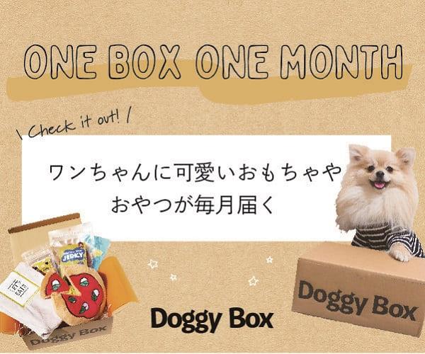 愛犬のおもちゃ・おやつ定期便 「Doggy Box」